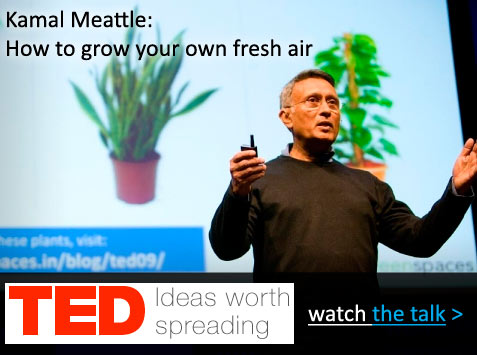 ted_talk_video_watchnow